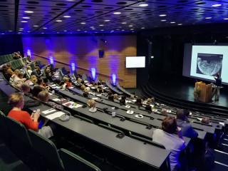 Auditorio Celsius